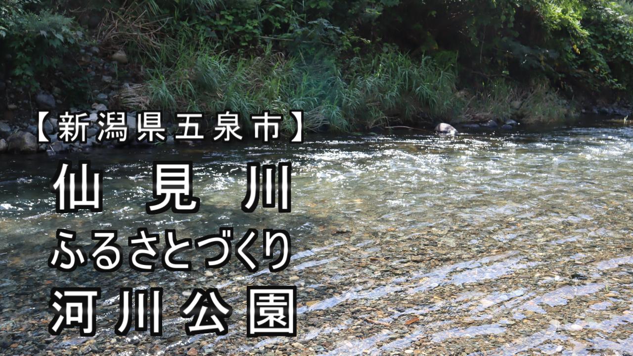 仙見川の川の写真