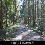 大蔵山の登山道の写真