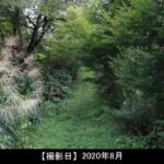 鶴城山への登山道