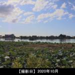 瓢湖水きん公園の写真