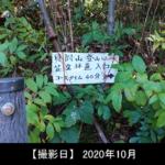 貝附山登山口の写真(花立コース)