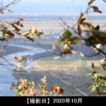貝附山山頂から見える風景