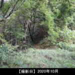 虚空蔵山 登山道の写真