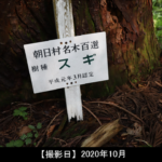 朝日村名木百選の看板写真