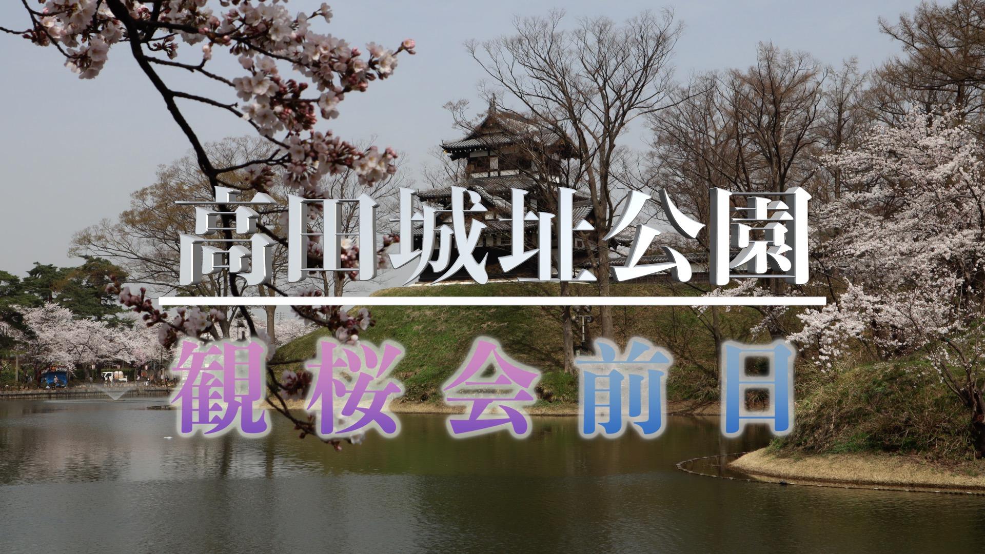 高田城址公園 観桜会前日のアイキャッチ