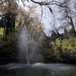 加茂山公園の噴水の写真
