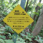 弥彦山 裏参道コース看板005