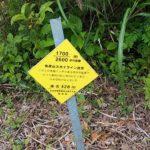 弥彦山 裏参道コース看板011