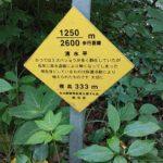 弥彦山 裏参道コース看板008