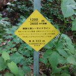 弥彦山 裏参道コース看板007