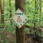 弥彦山 裏参道コース看板024