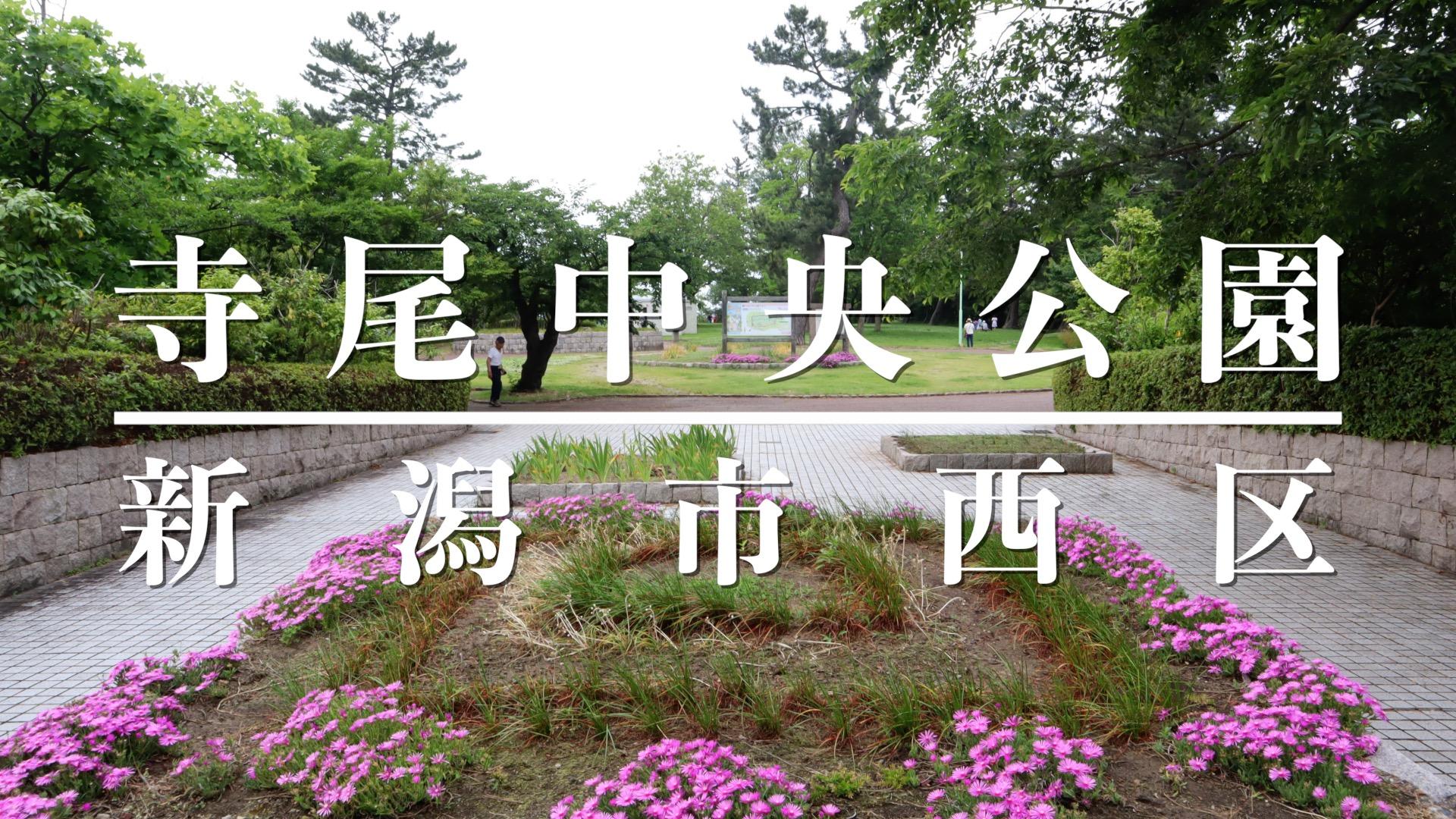 寺尾中央公園アイキャッチ