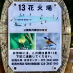佐潟公園の写真011
